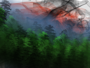 forest dtrawing